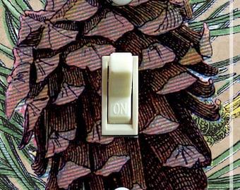 Pinecone IlIustration Decorative Switch Plate  ***FREE SHIPPING***