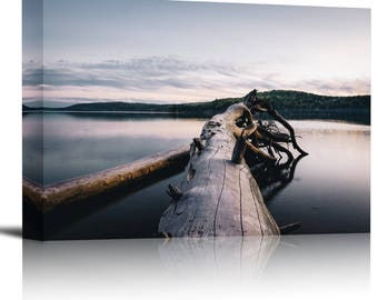 Fallen Tree Roots Forest Lake Art Print Wall Decor Image - Canvas Stretched Framed