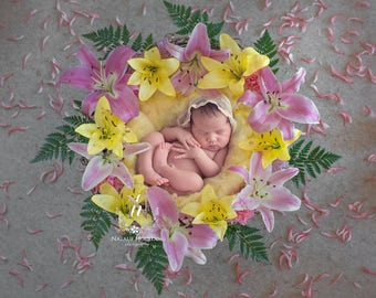 Newborn Digital Backdrop/ Prop / Photography / Fresh flowers basket (Raia)