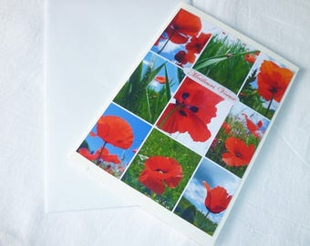 Double poppies greetings card