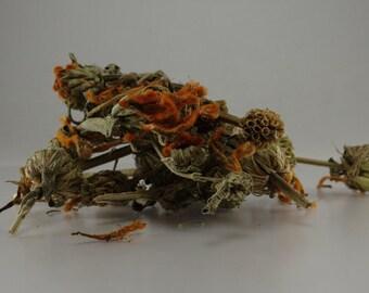 4 oz Wild Dagga Flowers (Leonotis Leonurus) Dried Herb Tea Klip