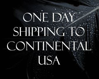 One Day Shipping to Continental USA Addresses