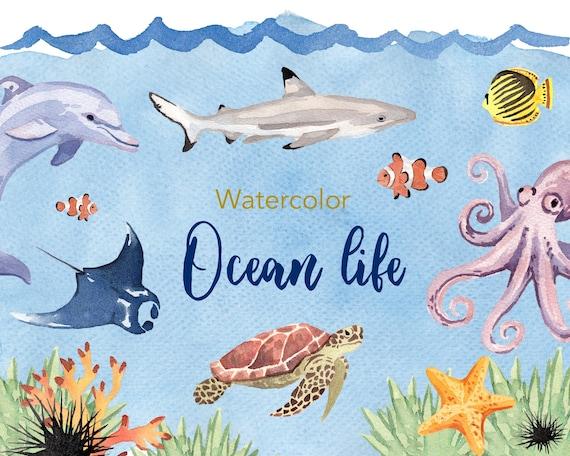 watercolor clipart ocean life clipart watercolour clipart rh etsy com ocean sea life clipart ocean life clipart free