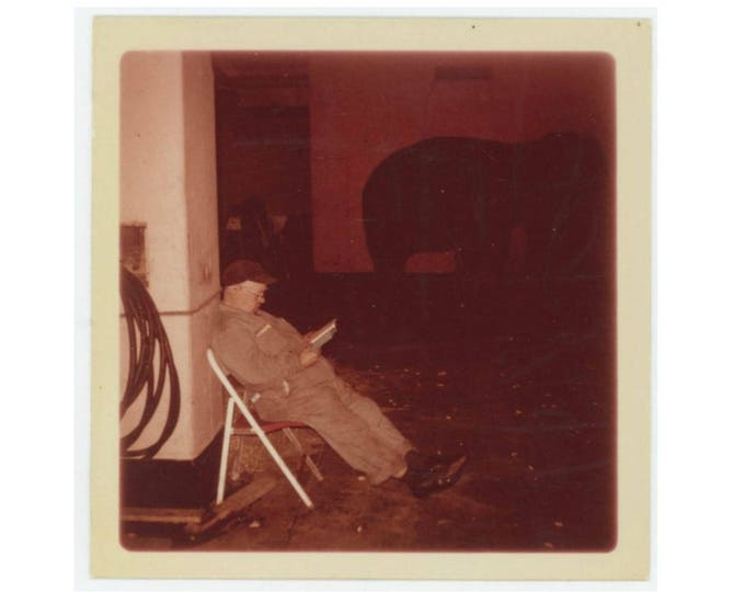 Zoo Keeper Reading in Elephant House, c1960s-70s: Vintage Snapshot Photo (77594)