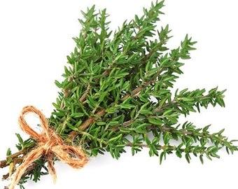 German Thyme Plant Herb, Lemon Thyme Plant Herb, A Perfect Housewarming Gift