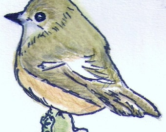Original Watercolor and Ink ACEO Pied Flycatcher, Watercolor Original ACEO, Original Watercolor Bird Painting