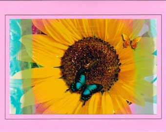 Sunflower Greeting Card, Sunflower and Butterflies, Pink Greeting Card