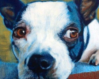 Immortalize your furry friends with custom, hand painted pet portraits on canvas, metal or wood!