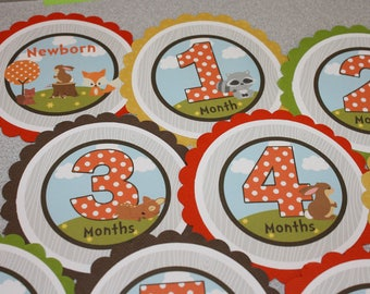 FOREST FRIENDS Baby's 1st Year Tags / Woodland First Year Tags / Forest 1st Year Tags / Forest Birthday/Monthly Photo Tags/Woodland Birthday