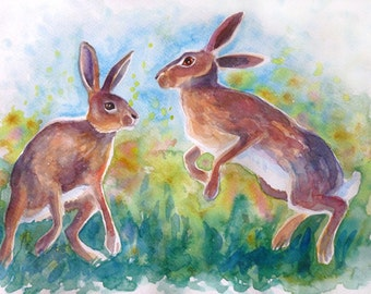 Watercolour painting of dancing hares in spring