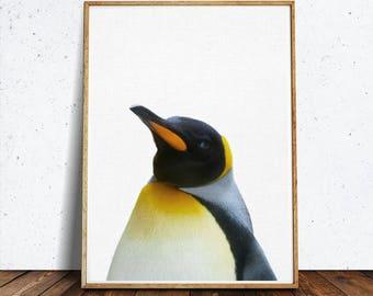 Penguin nursery art, PRINTABLE art, Nursery decor, Animal art, Baby animal prints, Nursery wall art, Nursery art, Zoo art