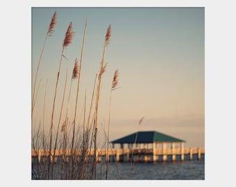 Sea Oats Photograph, Ocean Springs Beach Wall Art, Pier Photo, Beach House Wall Art, Coastal Photo, Blue Brown Decor, Seascape Photo,