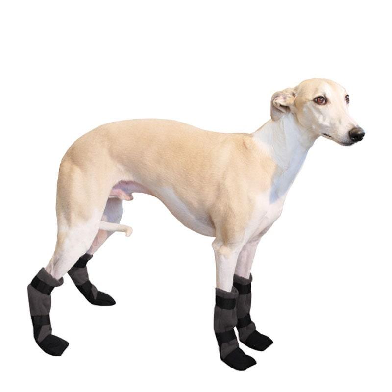 Non Slip Shoes For Dogs Australia