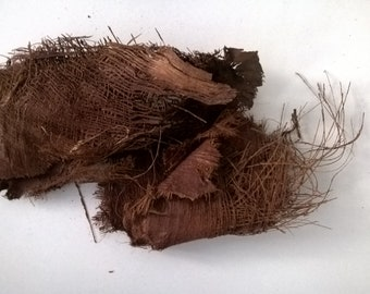 Dried Coconut Palm Fiber - 250g - Florist Supply - Natural Decaoration - Natural Brown Color