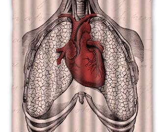 Anatomy Heart Lungs Shower Curtain   Anatomy Heart Shower Curtain   Heart  Lungs Anatomy Print