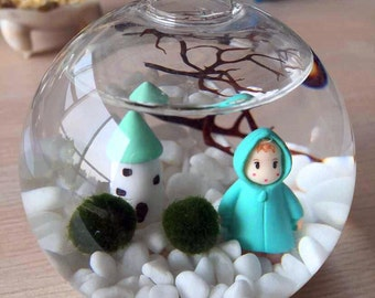 Marimo terrarium kit with marimo moss ball/white stone/sea fan-home decor,party favors,make a wish