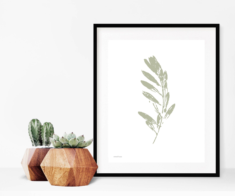 Impresión de hoja de oliva Grabado Botánico rama de olivo