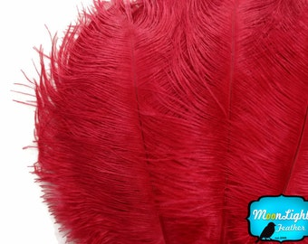 """Ostrich Feathers, 10 Pieces - 6-8"""" RED Ostrich Plumes Dyed Body Drabs Feathers : 2032"""