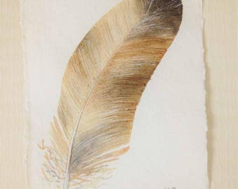 Original feather watercolour painting illustration in neutral tones with brown and rust