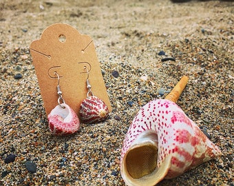 Matching Seashell Pipe and Earrings