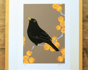 Blackbird & king hawthorn limited edition A3 print