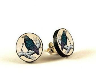 Raven -  handmade stud earrings - decoupage
