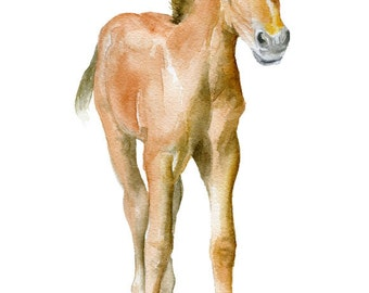 Horse Watercolor Painting - 4 x 6 - Giclee Print Reproduction - Nursery Art - Foal Colt Baby Farm Animals