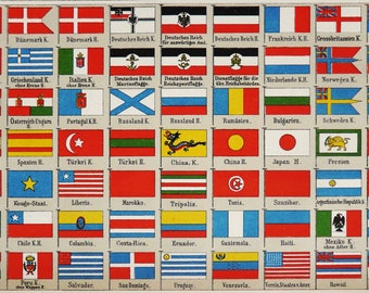 1895 Antique lithograph of WORLD FLAGS. 123 years old chart