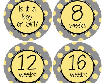 Belly Stickers, Pregnancy Announcement Sticker, Gender Reveal Stickers, Pregnancy Stickers, Pregnancy Photo Props, Baby Bump Sticker (628P)