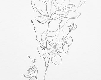 magnolia original 11x14 ink sketch