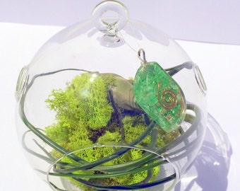 Air Plant Orgone Pendant with Copper Coil Crystal Healing Air Plant Garden