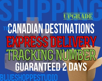 Shipping Upgrade Express Delivery to Canadian Destinations with Tracking Number Guaranteed 2 Business Days for BlueShoppeStudio Customers