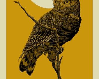 Burrowing Owl | Sunrise | 16x20 Screen Print