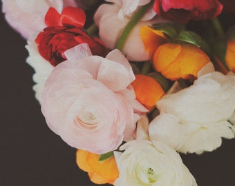 Flower Photography Floral Art Colorful Botanical Ranunculus Dark Art Still Life Print