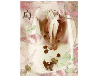 no rose fragrance