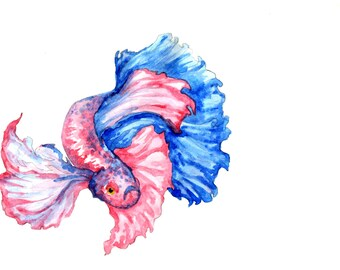 High Resolution Art Print: Beta Fish Traditional Watercolor Painting
