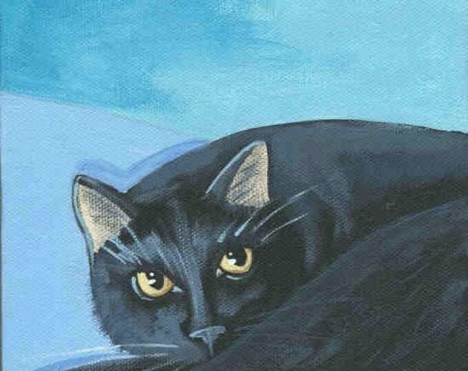 Black Cat watching