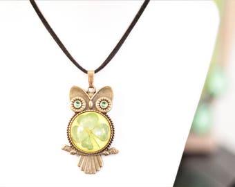 Real Four Leaf Clover Owl Necklace - 4 Leaf Clover Good Luck Lucky Irish Shamrock