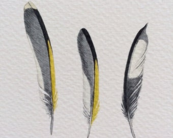 Three tiny Goldfinch feathers