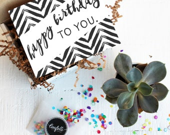 Mini Happy Birthday to You Gift Box - Send a Birthday Gift | Succulent Gift | Birthday Box | Friend Gift | Coworker Gift | Birthday Card