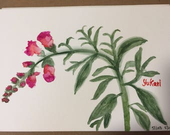Original watercolour painting Snapdragon