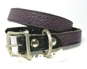 Dark purple leather buckle collar, eggplant purple