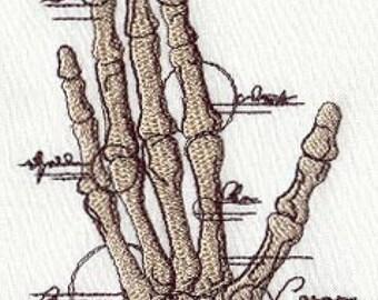 Anatomical Hand Embroidered Flour Sack Hand/Dish Towel