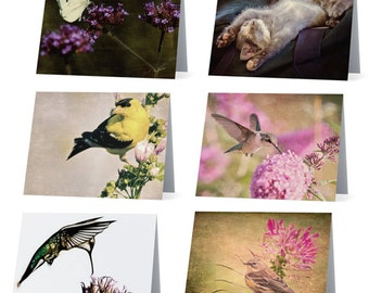 Assorted blank note cards - pack of 6