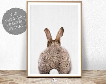 Nursery Print, Bunny Rabbit Poster, Printable Nursery Decor, Nursery Animal Print, Digital Download, Printable Kids Gift, Kids Room Poster