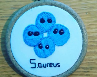 Staphylococcus aureus in a 3 inch frame