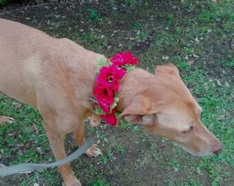 Customizable dog of honor collar, dog wedding flower collar, puppy wedding attire, red poppies wedding flower girl dog, girl dog collar