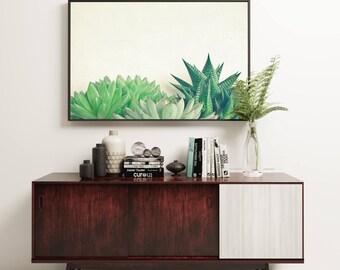 Succulent Print, Botanical Art, Gift for Gardener, Minimal Kitchen Wall Decor - Succulent Forest