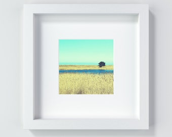 Reed Land Reed Seaside Art photography Fine Art print vintage 13 x 13 cm and 20 x 20 cm