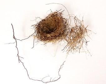 Birds Nest, Actual Natural Bird Nest, Florist Supply